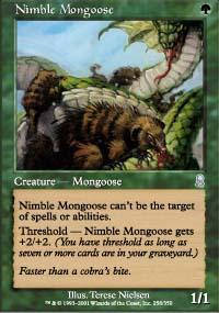 Nimble Mongoose - Odyssey