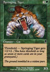Springing Tiger - Odyssey