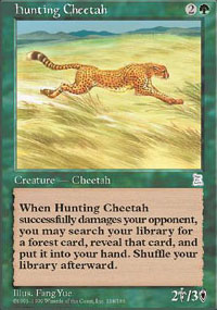 Hunting Cheetah - Portal Three Kingdoms