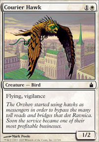 Courier Hawk - Ravnica