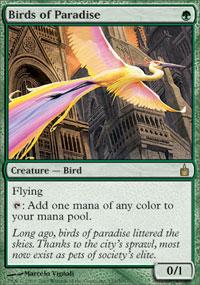 Birds of Paradise - Ravnica: City of Guilds