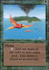Birds of Paradise - Revised Edition