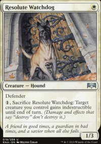 Resolute Watchdog -