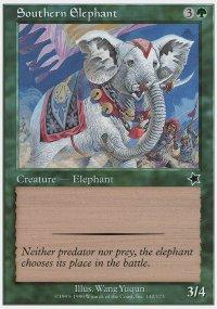 Southern Elephant - Starter