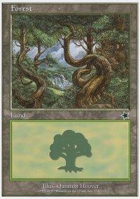 Forest 1 - Starter