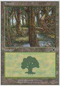 Forest 2 - Starter