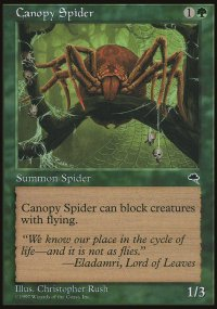 Canopy Spider - Tempest