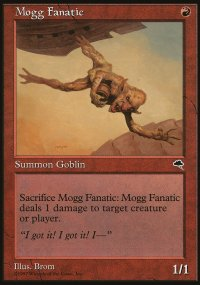 Mogg Fanatic - Tempest