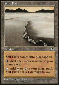 Salt Flats - Tempest