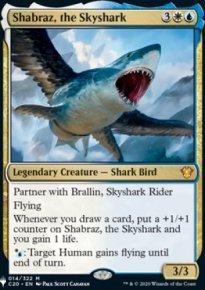 Shabraz, the Skyshark - The List