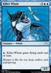 Killer Whale - Tempest Remastered