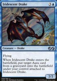 Iridescent Drake -