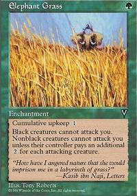 Elephant Grass - Visions