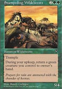 Stampeding Wildebeests - Visions