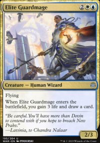 Elite Guardmage -