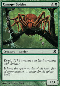 Canopy Spider - 10th Edition