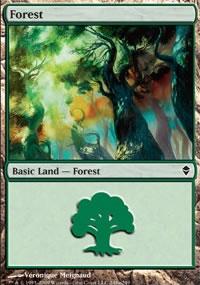Forest 6 - Zendikar