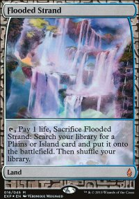 Flooded Strand - Zendikar Expeditions