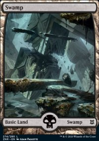 Swamp 3 - Zendikar Rising